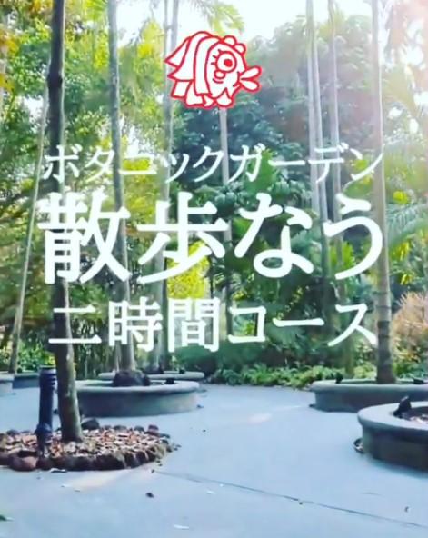 シンガポールボタニックガーデン.png