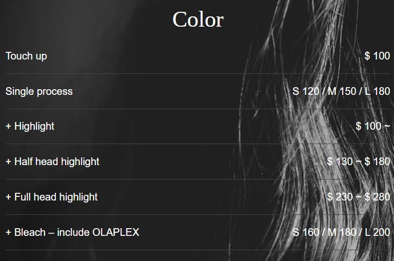 シンガポール美容室 SADS メニュー カラー