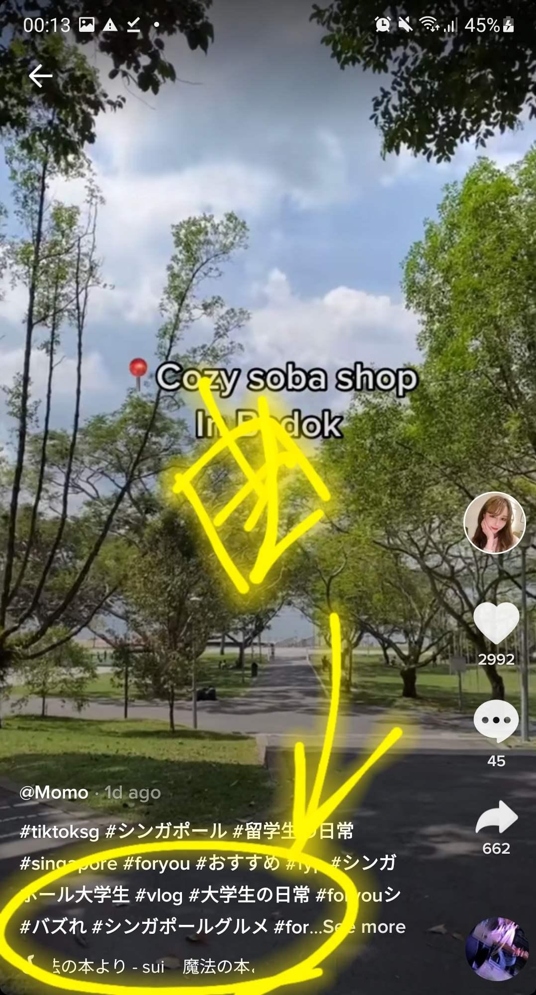 シンガポール TIKTOK 桃子ちゃん 選曲