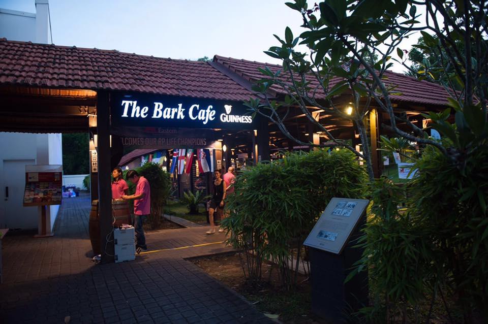 開放的な雰囲気の店内がおすすめ「The Bark Café」