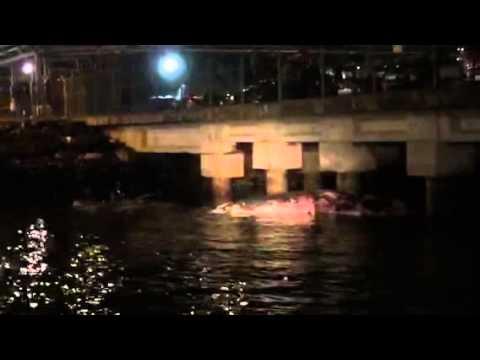 シンガポールでマッコウクジラ死骸発見。