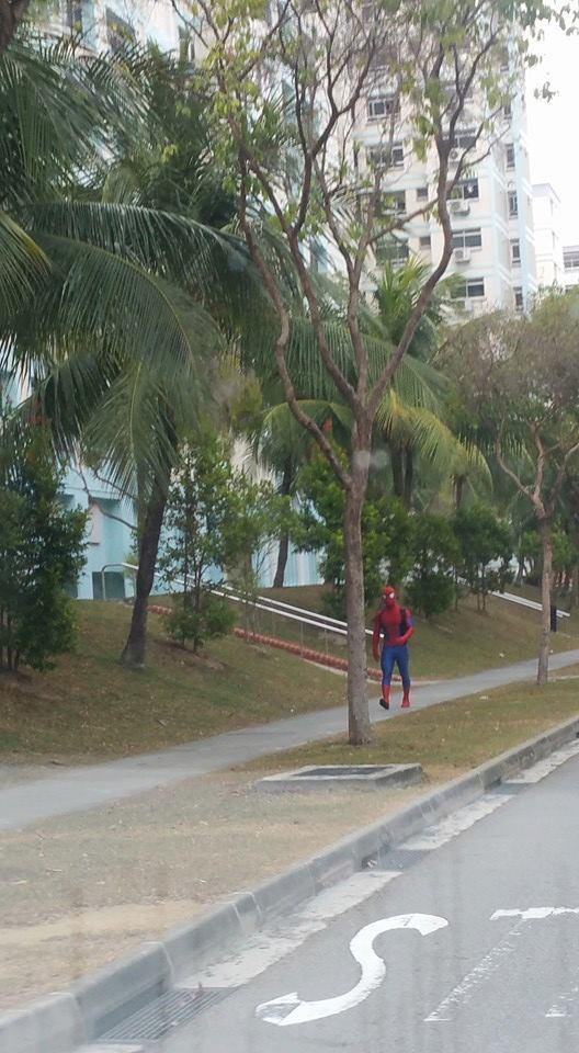 シンガポールでスパイダーマン歩いてた件。暑くないのかな?