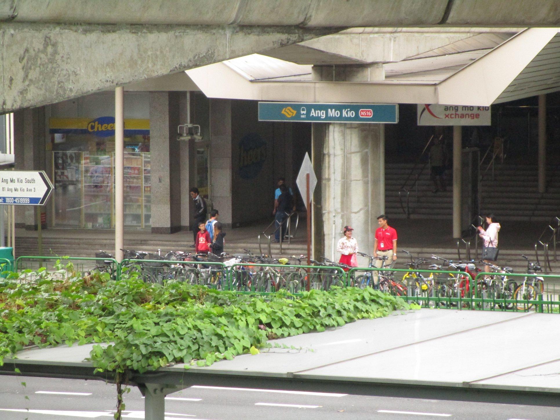 シンガポール賃貸 アンモキオ で月$350 が結構激ヤバかもな件。 バジェットならしょうがないけど。