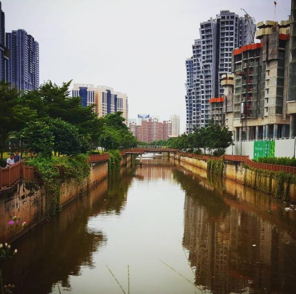 【シンガポールナマズ釣り】 シンガポール川でその他に釣れる魚ってなに?