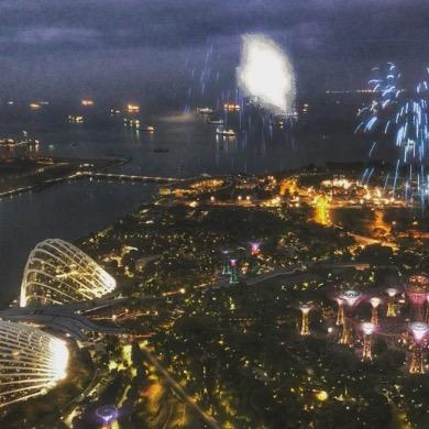 シンガポールカウントダウン のハイライト動画・画像集。 やっぱ行けば良かったw
