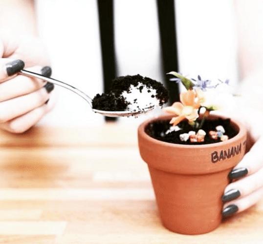 なにこれかわいい!食べられる植木鉢スイーツが超リアル