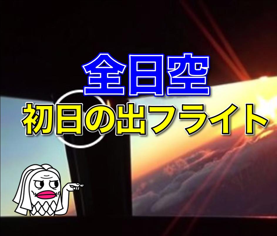 【必見】 全日空初日の出フライト タイムラプス動画
