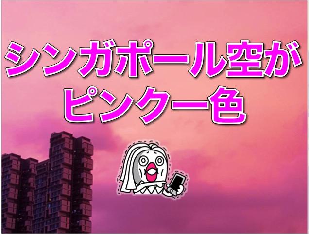 【シンガポール必見】 シンガポール空ピンク色 に染まって凄い神秘的だった件。
